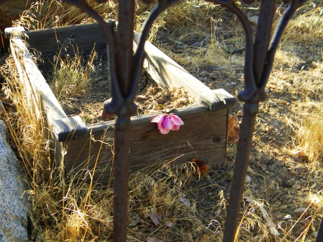 Pioneer child's grave, Virginia City, Nevada