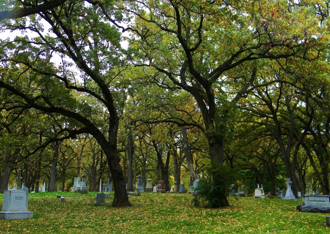 Trees and tombstones